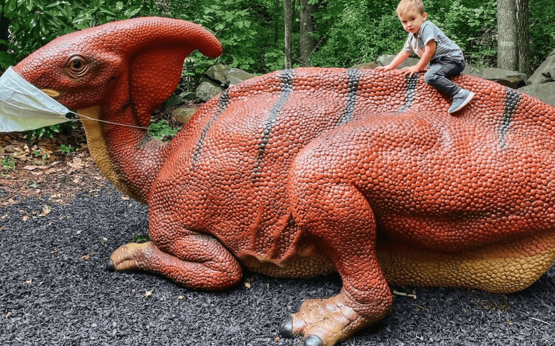 The Museum of Life and Science Sparks Curiosity in Durham